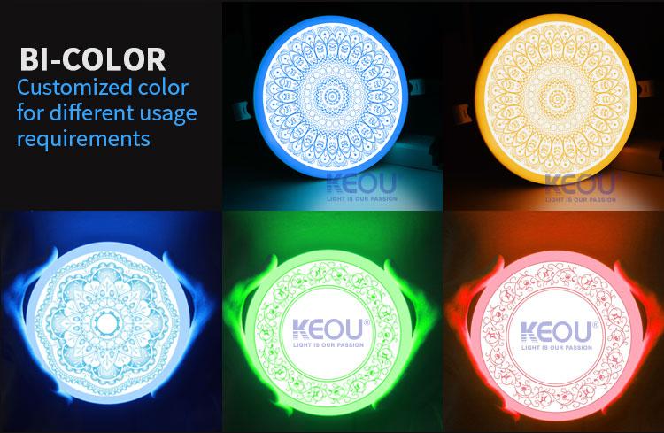 double color panel light