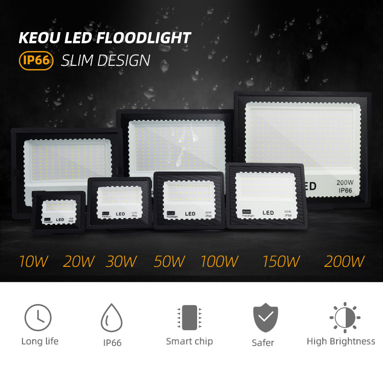 LED Food Light