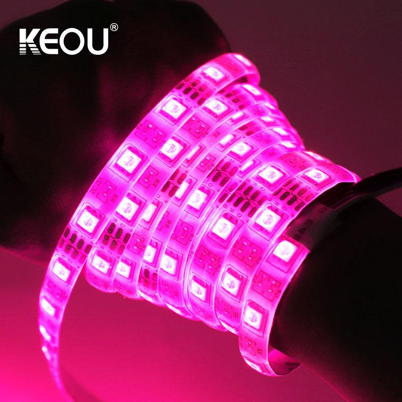 LED Strip Light RGB KEOU New 5M 10M Strip lights LED support Wifi App control IP54 Supplier